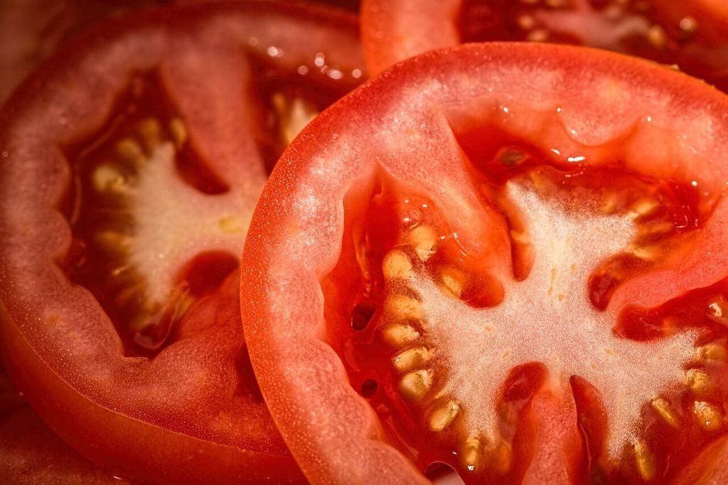 Purificador de agua casero piel de tomate